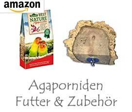 Agaporniden Futter & Zubehör